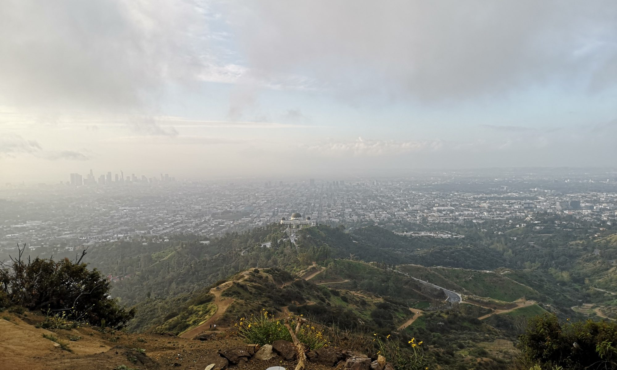 View on Los Angeles from the Griffith Park
